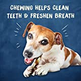 Purina Busy Grain Free Small/Medium Breed Dog Jerky Rawhide Treats, Jerky Twists Beefhide & Chicken - (5) 20 ct. Pouches