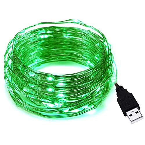 HAHOME 33Ft 100 LEDs USB Starry String Lights with Power Adapter for Wedding Christmas Party Decoration,Green