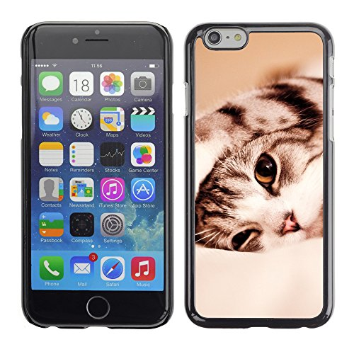 Premio Sottile Slim Cassa Custodia Case Cover Shell // V00003333 drôle chat paresseux // Apple iPhone 6 6S 6G 4.7""