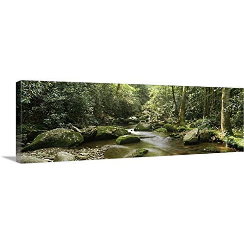 (Roaring Fork Motor Nature Trail, Great Smoky Mountains National Park, Tennessee Canvas Wall)