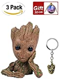 HaWenny 3Pack Baby Groot Planter Flowerpot Pot Pen Container and Groot Keychain Pendant,Action Figures Guardians of The Galaxy Flowerpot Baby Cute Model Toy Pen Pot Best Gift