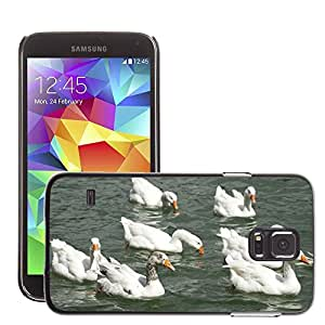 Etui Housse Coque de Protection Cover Rigide pour // M00117279 Gansos agua Naturaleza Pájaro de Vida // Samsung Galaxy S5 S V SV i9600 (Not Fits S5 ACTIVE)