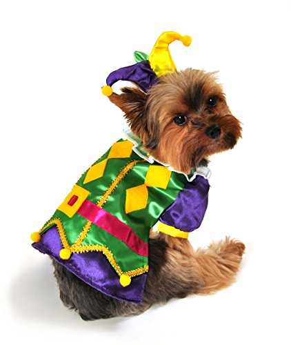 Anit Accessories AP1089-M Royal Harlequin Dog Costume by Anit Accessories