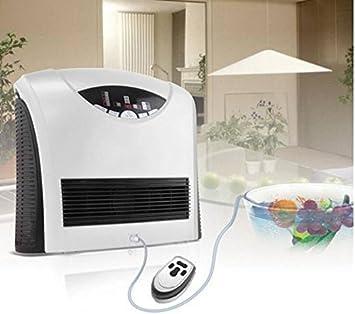 Generador de ozono para aire y agua Ozonizador 400mg/h: Amazon.es ...