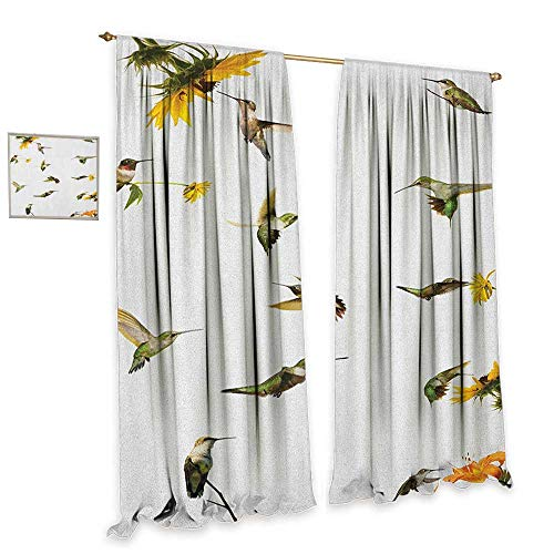 Hummingbird Collection 1 Light - homefeel Hummingbirds Waterproof Window Curtain Collection of Hummingbirds in Motion and at Rest Sunflowers Summer Fun Patterned Drape for Glass Door W120 x L108 Green Yellow Beige