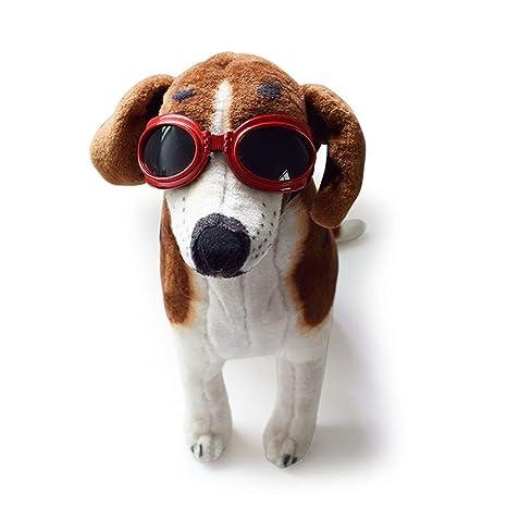 Newhaa Gafas para Mascotas Gafas de Sol para Perros Gafas ...