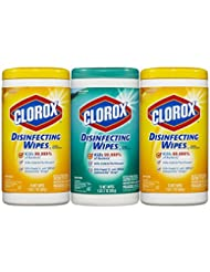 Clorox Disinfecting Wipes Value Pack, Fresh Scent and Citrus ...