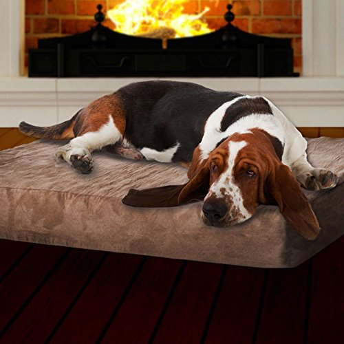 Love Your Pets With This Large Memory Foam Dog Bed WIth Removable Cover (Furniture Stores In Colorado Springs Co)