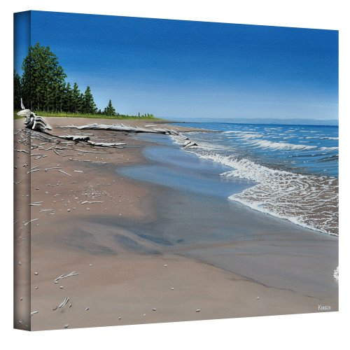 The Art Wall 36 by 48-Inch Driftwood Beach Wrapped Canvas by Ken Kirsch (Drift Wood Wall)