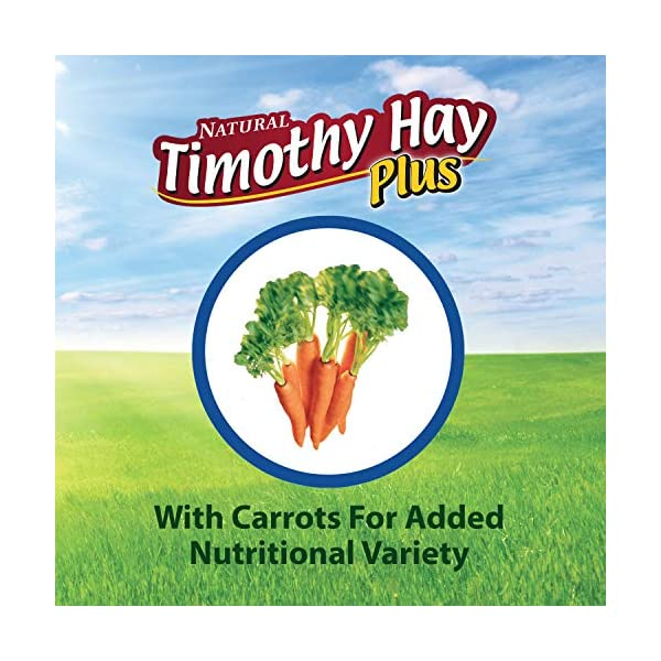 Kaytee Timothy Hay for Rabbits & Small Animals, Assorted Flavors, 24 oz Bag 4