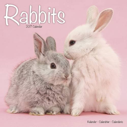 [BEST] Rabbit Calendar - Cute Animal Calendar - Calendars 2016 - 2017 Wall Calendars - Animal Calendar - Ra EPUB