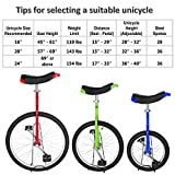 T4B Freestyle Unicycle 20-Inch Wheel - Leakproof