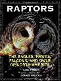 img - for Raptors: The Eagles, Hawks, Falcons, and Owls of North America book / textbook / text book