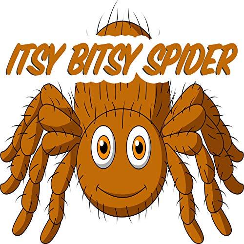 (Itsy Bitsy Spider)
