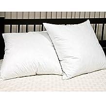 Blue Ridge Home Fashion Feather Euro Square Pillow (2 Pack), Euro, White
