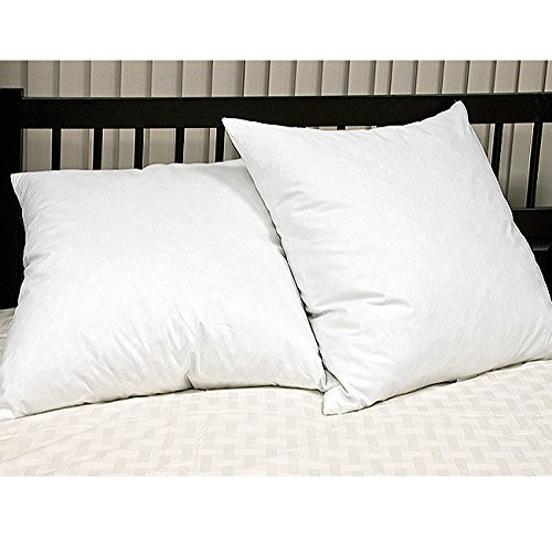 Blue Ridge Home Fashion Feather Euro Square Pillow (2 Pack), Euro, White