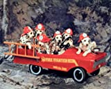 Dalmatian Puppies in Fire Truck Dog Animal Wall Decor Art Print Poster (16×20)