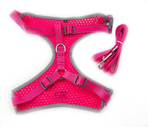 2PET Reflective Adjustable Harness Leash product image