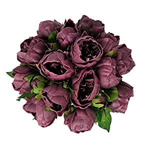 Meide Group USA 14″ Real Touch Latex Peony Bunch Artificial Spring Flowers for Home Decor, Wedding Bouquets, and centerpieces (6 PCS) (Wine)