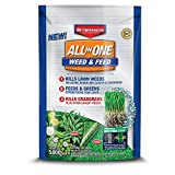 BioAdvanced All-in-One Weed & Feed with Microfeed