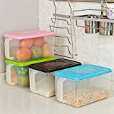 Orpio New food storage containers set / Refrigerator Food Storage Box / Kitchen- Storage Box / Food Rice Pasta Container / vegetables Storage box (Pack Of 1)