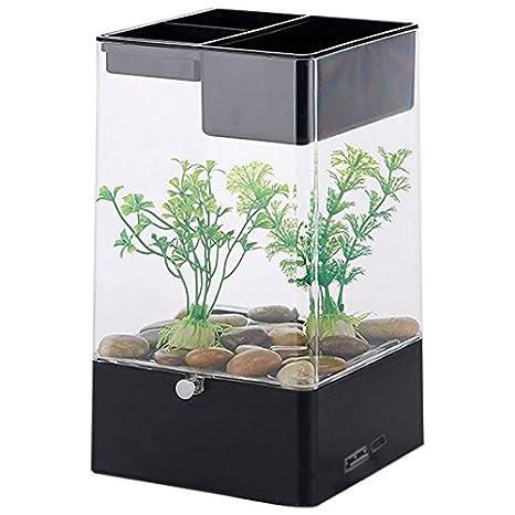 SODIAL Acuario de interfaz USB cuadrado de luz LED Filtro de pecers de escritorio de oficina ecologico, Negro + transparente: Amazon.es: Hogar