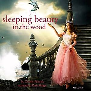 Sleeping Beauty in the Wood Audiobook