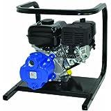 AMT Pump 1G4XAR Engine Driven Utility Pump with Briggs & Stratton Engine, Aluminum, 4 HP, Curve B, 1  NPT Female...