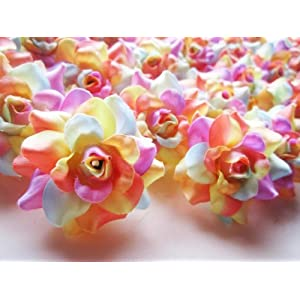 "(24) Silk Light Rainbow Roses Flower Head - 1.75"" - Artificial Flowers Heads Fabric Floral Supplies Wholesale Lot for Wedding Flowers Accessories Make Bridal Hair Clips Headbands Dress 92"