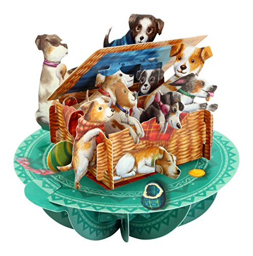 Santoro Pirouettes PS062 Basket of Puppies 3D Pop Up Card, Multicolor