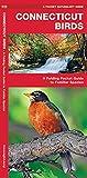 Connecticut Birds: A Folding Pocket Guide to Familiar Species (A Pocket Naturalist Guide)