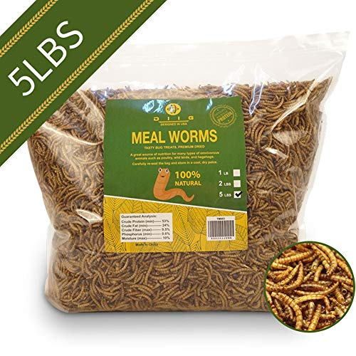 diig Non-GMO Dried Mealworms - Treats for Birds Chickens Hedgehog Hamster Fish Reptile Turtles, 5 lb