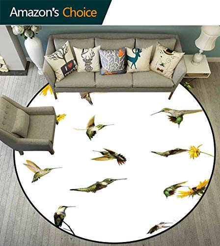 Hummingbirds Decor Round Rug Kids Room,Collection of Hummingbirds in Motion and at Rest Sunflowers Summer Fun Easy -