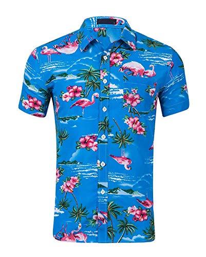 CATERTO Men's Relaxed-Fit Cotton Tropical Flamingo Hawaiian Casual Shirt Blue XL