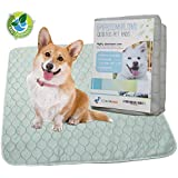 Origami Duck Eco Friendly Premium Extra Large Washable Dog Pee Pads Pack of 2- Puppy Training Whelping Reusable Pet Travel Incontinence Potty Mats 30 x 34 inch