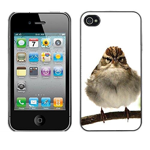 Premio Sottile Slim Cassa Custodia Case Cover Shell // F00014130 oiseau // Apple iPhone 4 4S 4G