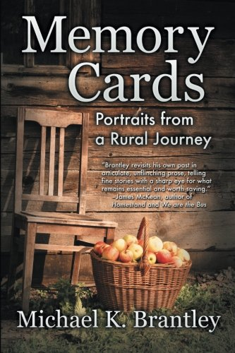 Download Memory Cards pdf epub