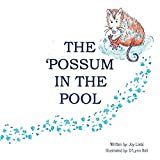 The Possum in the Pool
