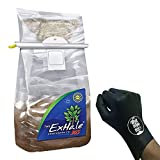 EXHALE 365 – SELF ACTIVATED CO2 BAG HOMEGROWN for GROW ROOMS & TENTS + THCiTY LIGHTNING GLOVES Review