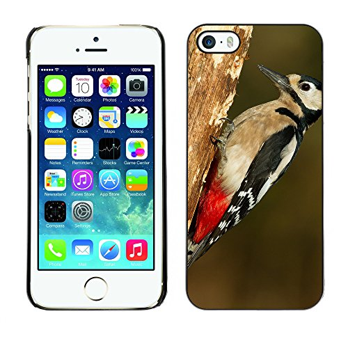 Premio Sottile Slim Cassa Custodia Case Cover Shell // F00007319 oiseau // Apple iPhone 5 5S 5G