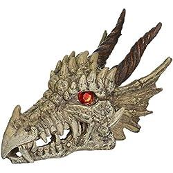 Penn Plax RR1207 Dragon Skull Gazer Ornament