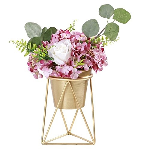 Plant Urns Planter Pot Indoor Geometric Metal Stand Balcony Tabletop Succulent Pot Bonsai Decorative Home Garden Kitchen Modern Plant Holder for Cactus Flower Plant (M) ()