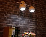 HOMEE Wall lamp- continental clothing backdrop lights led track wall --wall lighting decorations ( style : 1 ),2