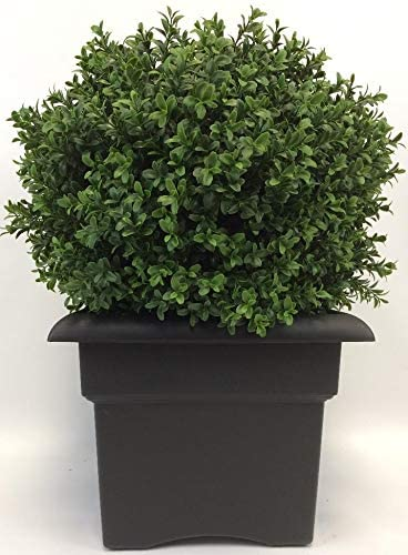 Outdoor Artificial Uv Rated 2 Ft Ball Boxwood Topiary Tree With Square Black Planter