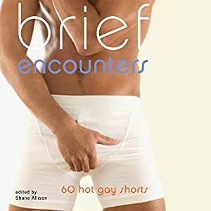 Brief Encounters: 60 Hot Gay Shorts Audiobook