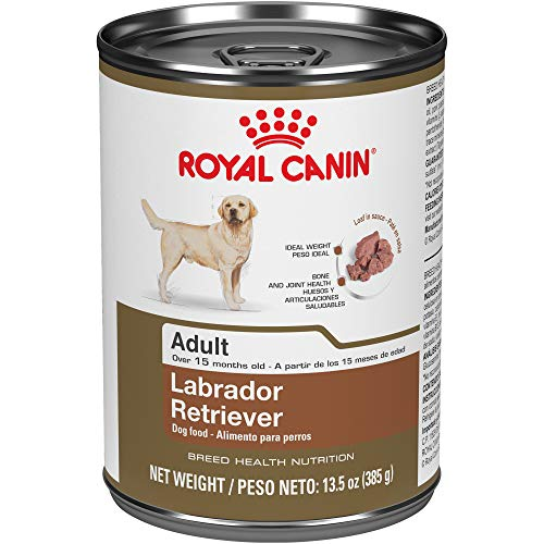 Royal Canin Labrador Retriever Adult Breed Specific Wet Dog Food, 13.5 oz. can (The Best Dog Food For Labs)