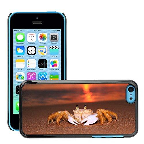 Stampato Modelli Hard plastica Custodie indietro Case Cover pelle protettiva Per // M00421724 Siri Sunrise Beach // Apple iPhone 5C
