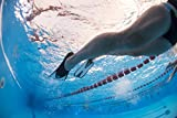 SEAC Speed Snorkeling Swim Fins