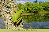 Images for Conservation - Book Two: Coastal Bend of Texas Edition (Pro-Tour series)