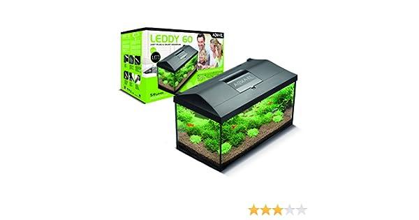 Aquael LEDDY 60 equipado con acuario de 60 x 30 x 30 cm 54 L: Amazon.es: Productos para mascotas